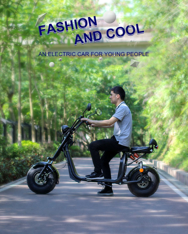 Fast Charging Two Wheel Electric Scooter , Two Wheeled Standing Scooter Eec Approval